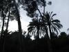 Barcelone_043