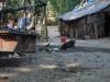 bangalore_fev10_403