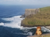 Irlande - Cliff of Moher